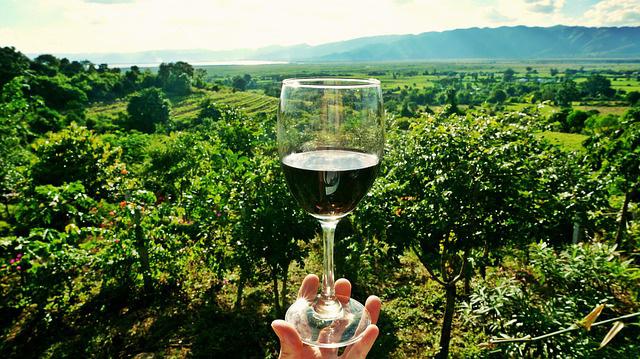 Exploring the origins of wine regionality